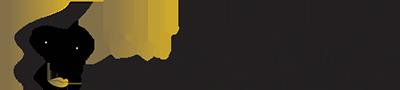 logo_expert_19